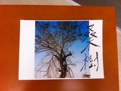 鈴木育郎写真集『桑樹』