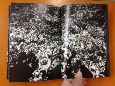 森山大道写真集『Ango (日本語版)』5