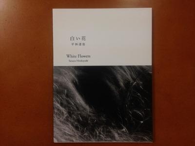 平林達也写真集『白い花』