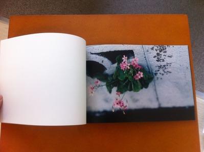 鈴木育郎写真集『最果』1