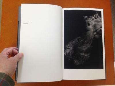 真月洋子写真集『a priori innerplants』1