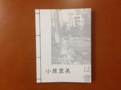 小原里美写真集『東京は雪』