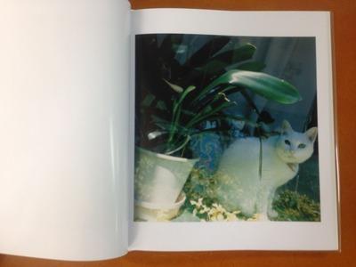 原美樹子写真集『hysteric thirteen / Hara Mikiko』3