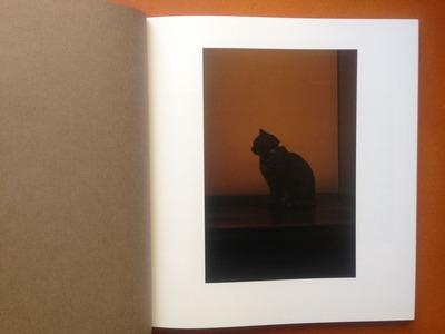 宮崎剛写真集『A Cat Catcher in The Rye』1