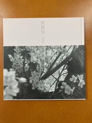 川廷昌弘写真集 『芦屋桜』