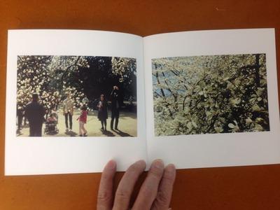 鈴木美保写真集『冬の薔薇』4