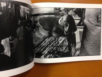 阿部淳写真集『1981 (上)』5