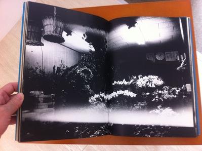 中平卓馬写真集『来たるべき言葉のために』2