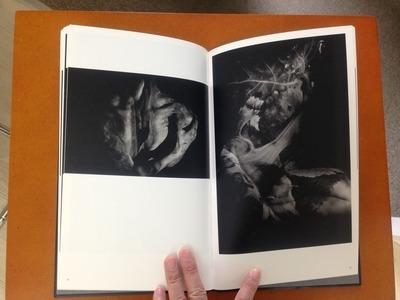 真月洋子写真集『a priori innerplants』4