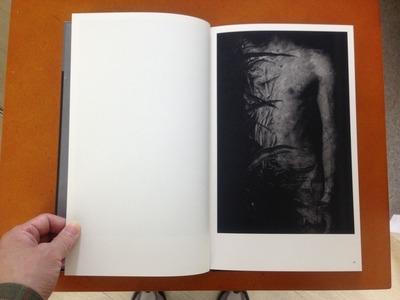 真月洋子写真集『a priori innerplants』2