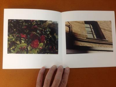 鈴木美保写真集『冬の薔薇』2