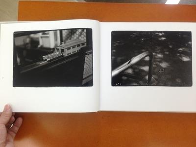 原芳市写真集 『常世の虫』2