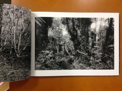地現葉子写真集『emu』3