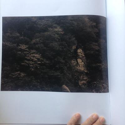 柴田慶子『Ancient Ray』5