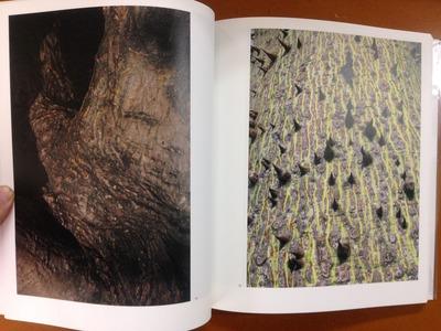 東松照明写真集『新編 太陽の鉛筆』4