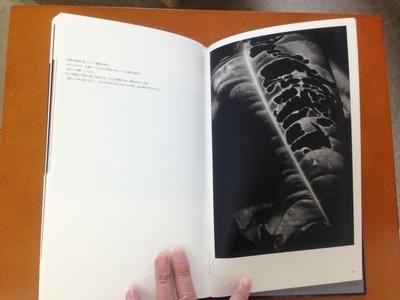 真月洋子写真集『a priori innerplants』5