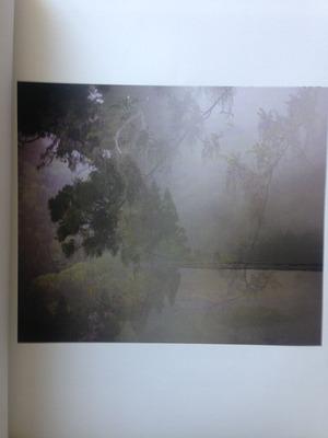 柴田慶子『Ancient Ray』1