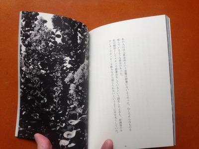 酒巻剛好『酒と馬 第八号 咲かない花』4