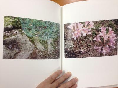 仲田絵美写真集『よすが』3