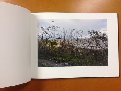 伊藤昭一写真集『留鳥 RESIDENT BIRDS』1