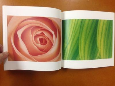 小林洋美写真集『flower's』