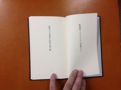 沢渡梢『句集 白い靴』2