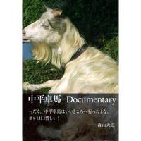 中平卓馬Documentary