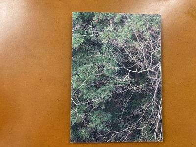 Sumire Sakuma写真集 『The Branches』