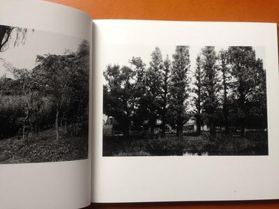 安井直博写真集『木の東京』2
