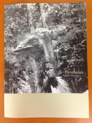 櫻井尚子写真集『鳥ーDromaius』