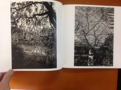 杉浦正和写真集『櫻花行』2