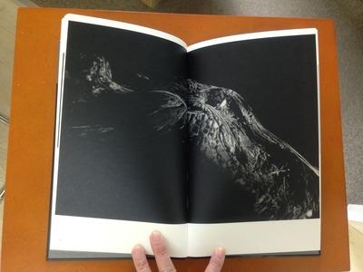 真月洋子写真集『a priori innerplants』3