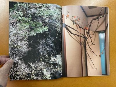 Sumire Sakuma写真集 『The Branches』3