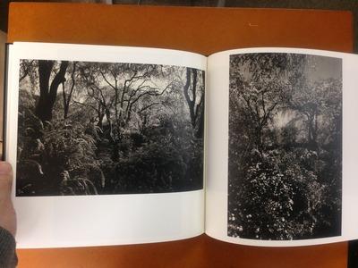杉浦正和写真集『櫻花行』5