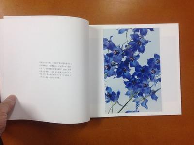 小林洋美写真集『flower's』1