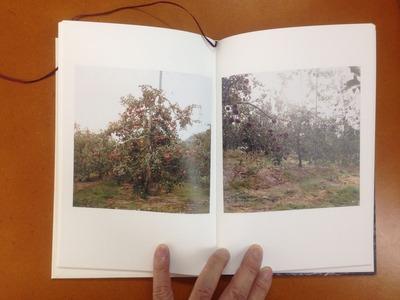 川鍋祥子写真集『そのにて』2