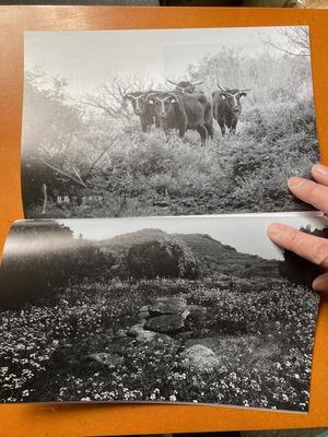 写真誌「陰と陽 Vol.4」7