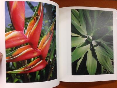 東松照明写真集『新編 太陽の鉛筆』6