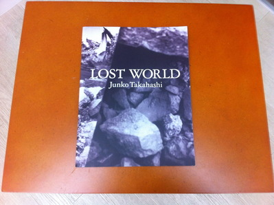 高橋ジュンコ「LOST WORLD」