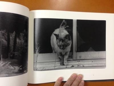 野村昌平写真集『いくつかの記憶』7