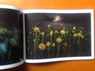 松本コウシ写真集『真夜中のエーテル』4