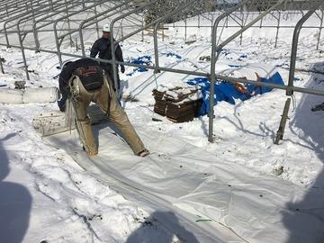 テント工事の開始