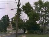 utility poles and wire 2