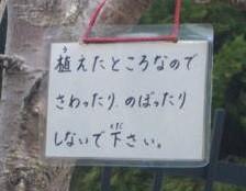 20090105_548422