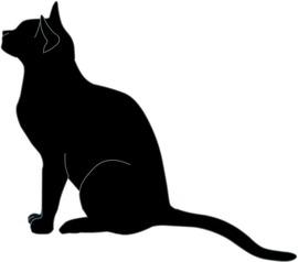 cat-b01