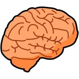 brain-350x350