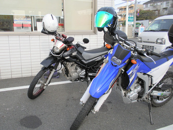 PB110235s