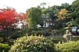 大阪城で ちょっとーそのカメラ邪魔!
