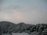 綺麗な雪に空がうっすら頬染めた