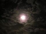 「月おぼろ」?